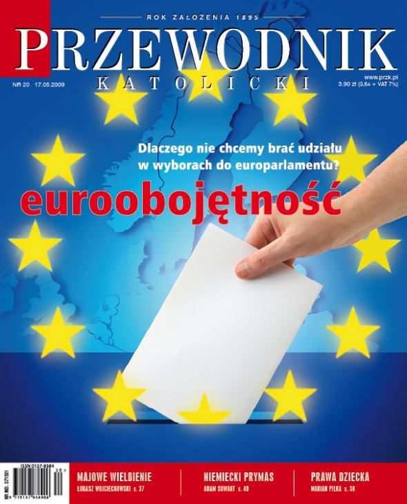 Parlamentarna eurołamigłówka