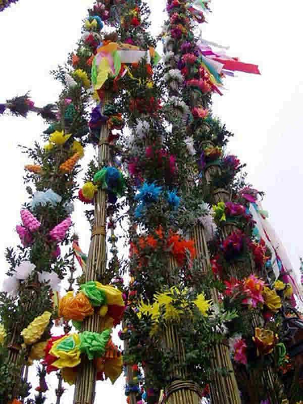 26 Światowy Dzień Młodzieży, Niedziela Palmowa 2011
